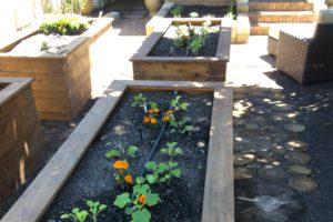 raised garden bed in boise | FarWest Landscape | Boise Idaho