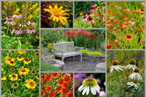 Personal Gardener | FarWest Landscaping | Boise ID