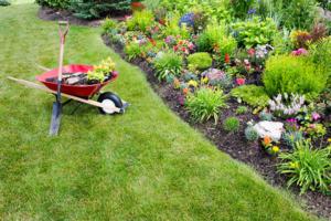 landscape maintenance | personal gardener | farwest landscaping boise