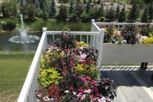 flowers |FarWest Landscaping |Personal Gardener